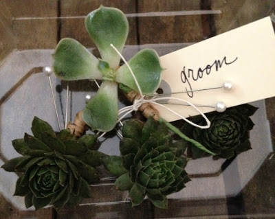 succulent boutonniere - greenfinch-floral-design-crop.jpg
