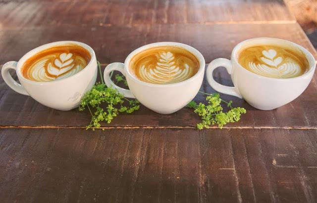cups crp.jpg
