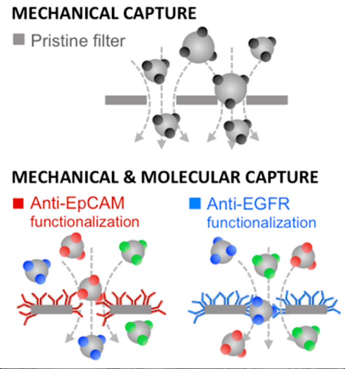 56. A. Meunier, J. A. Hernández-Castro, K. Turner, K. Li, T. Veres, and D. Juncker,   Combination of Mechanical and Molecular Filtration for Enhanced Enrichment of Circulating Tumor Cells  , Analytical Chemistry,88, 8510–8517 (2016).  PDF     SI