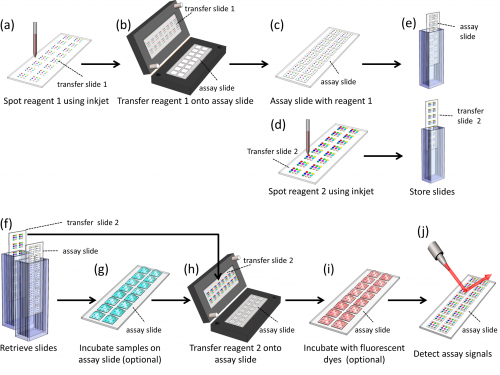 51.  H. Li, J. D. Munzar, A. Ng, and D. Juncker,  A Versatile Snap Chip for High-Density Sub-Nanoliter Chip-to-Chip Reagent Transfer  ,Scientific Reports,5, 11688 (2015) .  PDF     SI