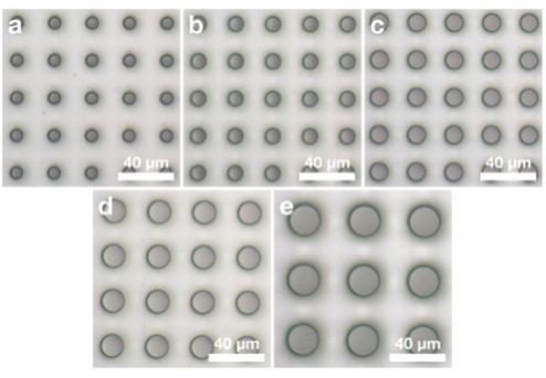 Fabricated polymer microfilters.   Optical microscope pictures of membranes with regular distribution and size of pores, microfilters with   (A)   8,   (B)   10,   (C)   12,   (D)   15, and   (E)   20 µm in diameter have been fabricated successfully for the CTC project.