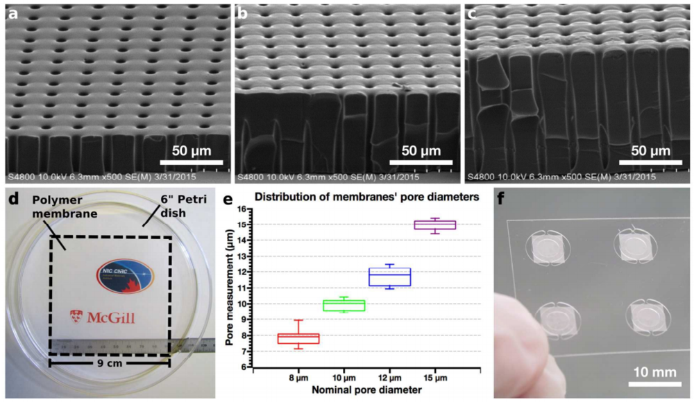 63.  J.A. Hernández-Castro, K.Li,A. Meunier,D. Junckerand T. Veres,  Fabrication of large-area polymer microfilter membranes and their application for particle and cell enrichment,   Lab Chip, 2017, 17, 1960-1969.  PDF  |  SI
