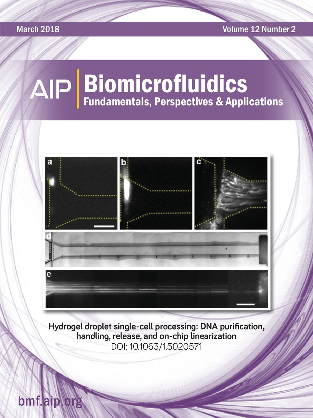 Zimny-Biomicrofluidics Front Page.jpg