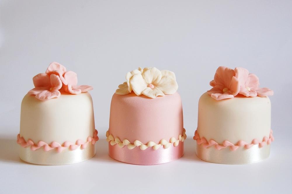 shoot cakes 002.JPG