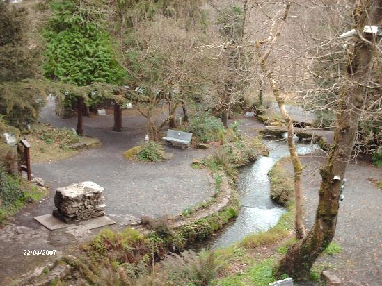 Tobernault Well, Sligo