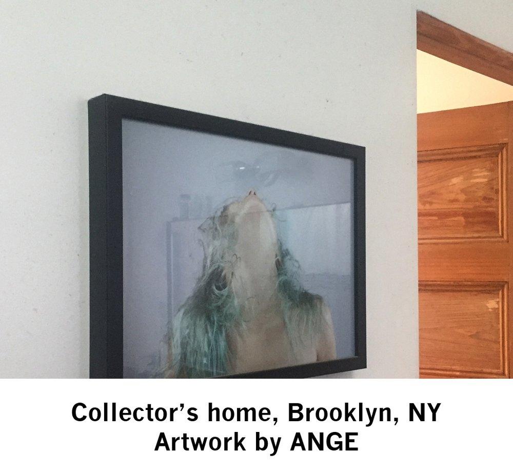 ANGE-collect2_web.jpg