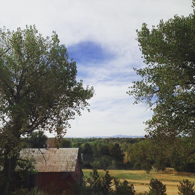 Beautiful views from clients future 2nd story office #fallcolors #barn #colorado