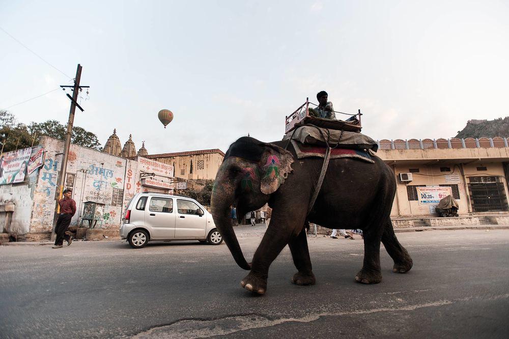 Elephant and balloon. Jodhpur, India 2011. ©Jens Lennartsson
