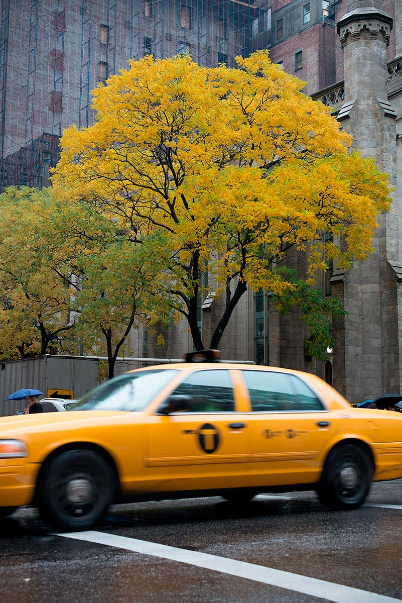 Yellow cab in New York, can it be any more obvious? ©Jens Lennartsson, 2014