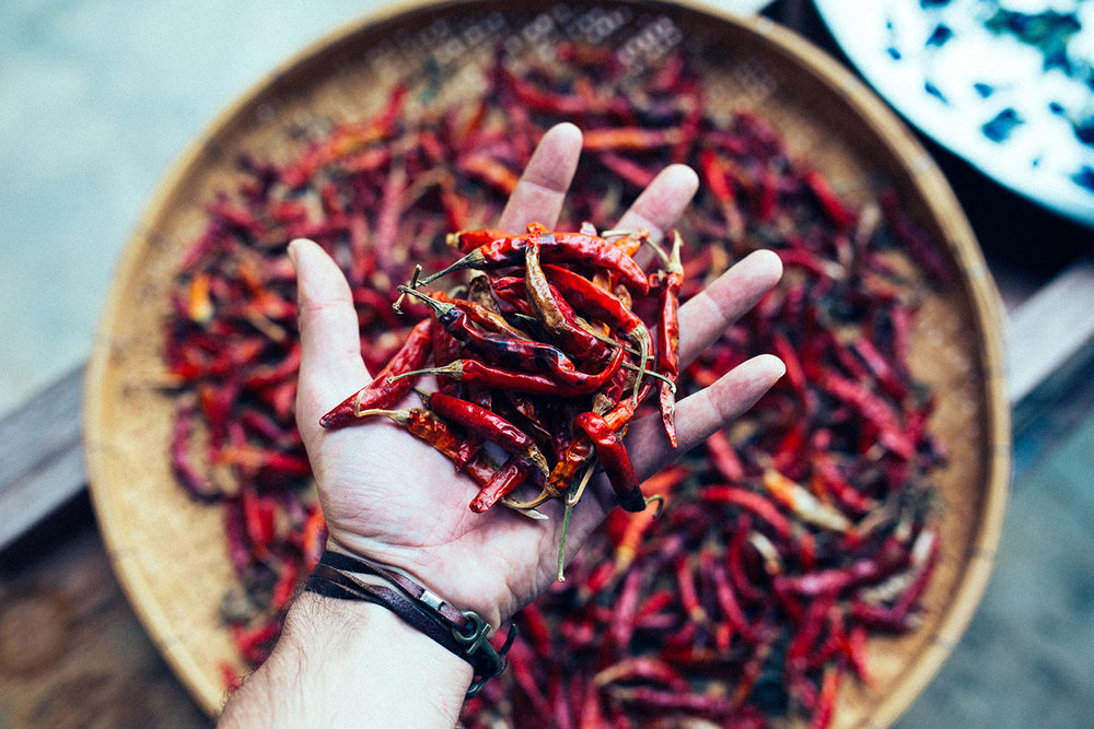 Sun-dried chilis in Sukhothai, Thailand 2015 ©Jens Lennartsson