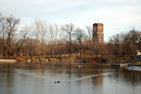 McKinley Park during the fall.