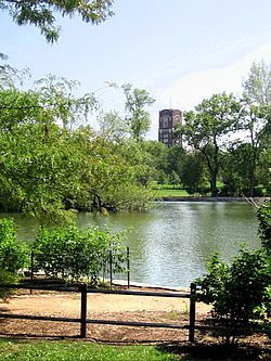 McKinley Park Lagoon during the summer facing Pershing Road.
