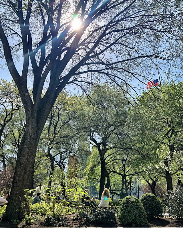 90degrees and everybody is out enjoying this amazing day. Great farmers market in union square. And just the sun caressing New York Soul. . . . . #farmermarket #unionsquare #newyork #sunny #work #feeling #good #instagood #momentoflife