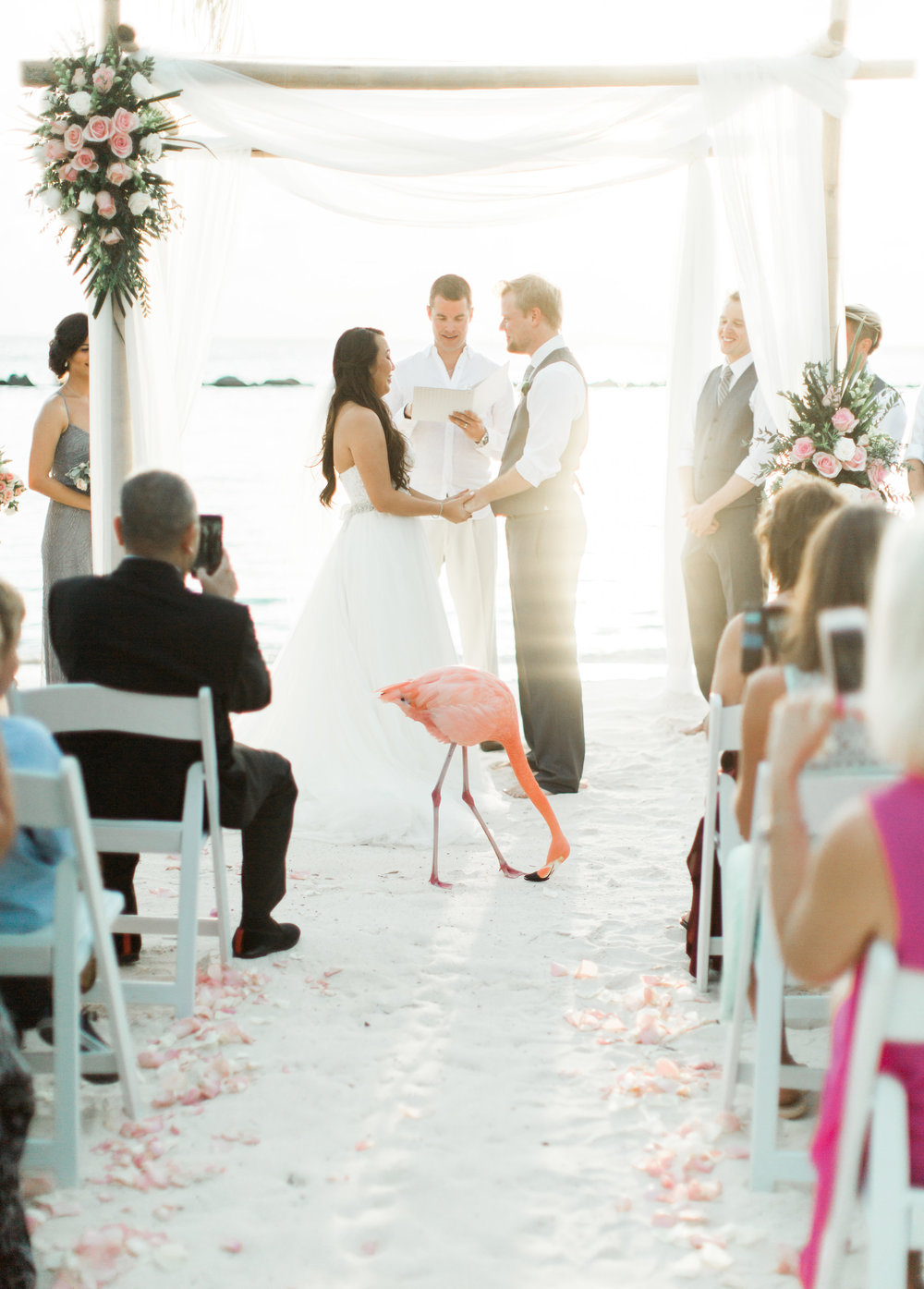 Caribbean destination wedding in Aruba, by Dallas destination wedding photographer Tracy Enoch