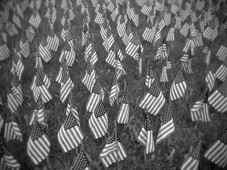 mem_day_flags_bw.jpg