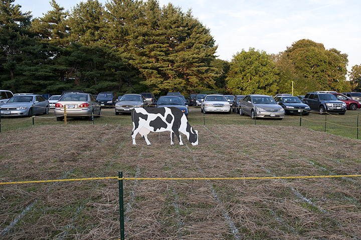 Park Your Cow Here
