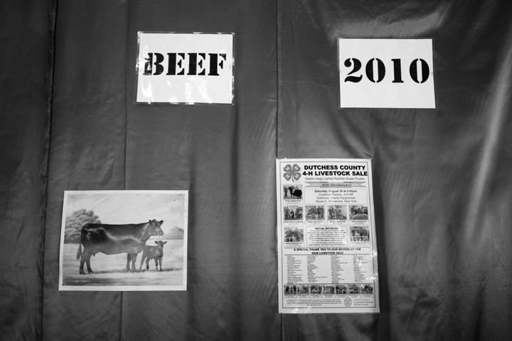 Beef 2010