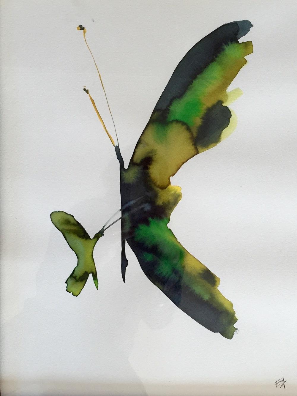 Le Papillon Scintillent, 2015
