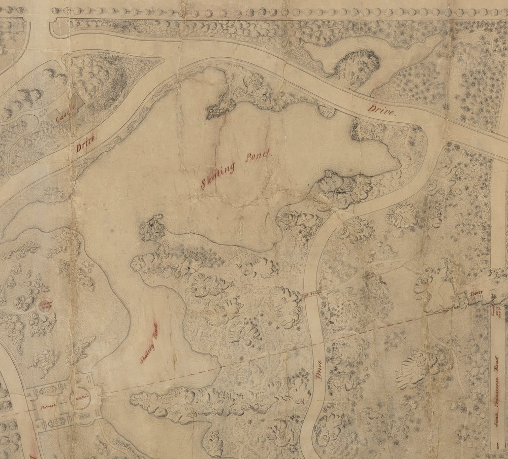 Detail of Calvert Vaux and Frederick Law Olmsted's 1857 Greensward plan submission drawing showing the skating pond. Black ink with colored pencil on paper. Department of Parks Collection, NYC Municipal Archives.