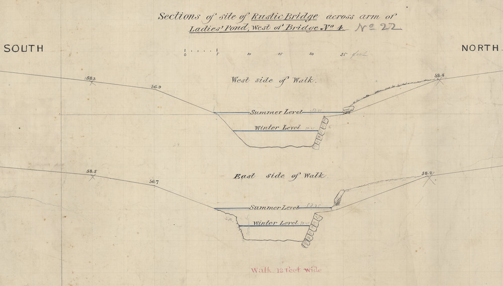 Summer and winter water levels at the site of the Rustic Bridge crossing an arm of the Ladies Skating Pond, c. 1860. Black and colored inks with pencil on paper. Department of Parks Collection, NYC Municipal Archives.  The levels of the water of the Lake ranged from seven feet deep in the summer to provide ample room for boaters and swimmers to only four feet in the winter as a safety measure should anyone fall through the ice.
