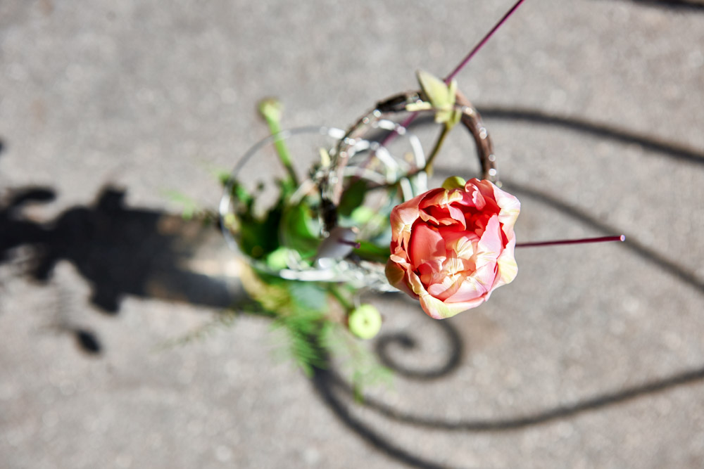 sieben-rosen-fruehling-ostern-2015_DSC8701.jpg