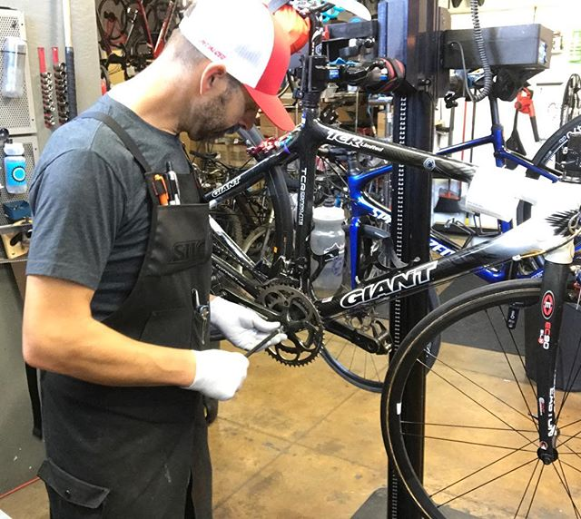 He's camera shy and has a little dog with a Napoleon complex.  Paul does however crush the mechanical side of things .  Look for him throwing wrenches at our Mountain View location #cognitioncyclery #bikemechanic #cap #mountainview #peoplewhoworkhere