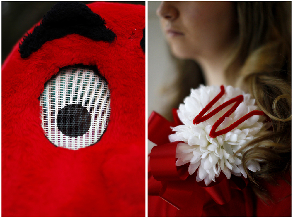 Left: Big Red, WKU's mascot, poses for a portrait along the Avenue of Champions at Western Kentucky University on Saturday, Nov. 8, 2014.  Right: Shelley Spalding, a Lebanon senior and Honors College Homecoming Queen candidate, wears her newly pinned Homecoming mum after the pinning ceremony at the WKU Chandler Memorial Chapel on Saturday, Nov. 8, 2014.