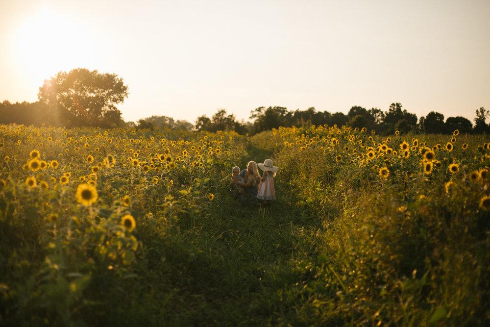 2018.07.25_Williams_SunflowerMini_Starks-0004.jpg