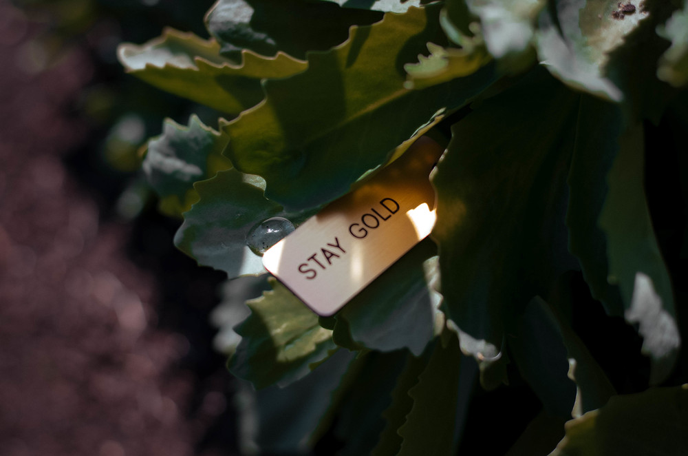Stay Gold Keytag. Photo by Britany Powell.