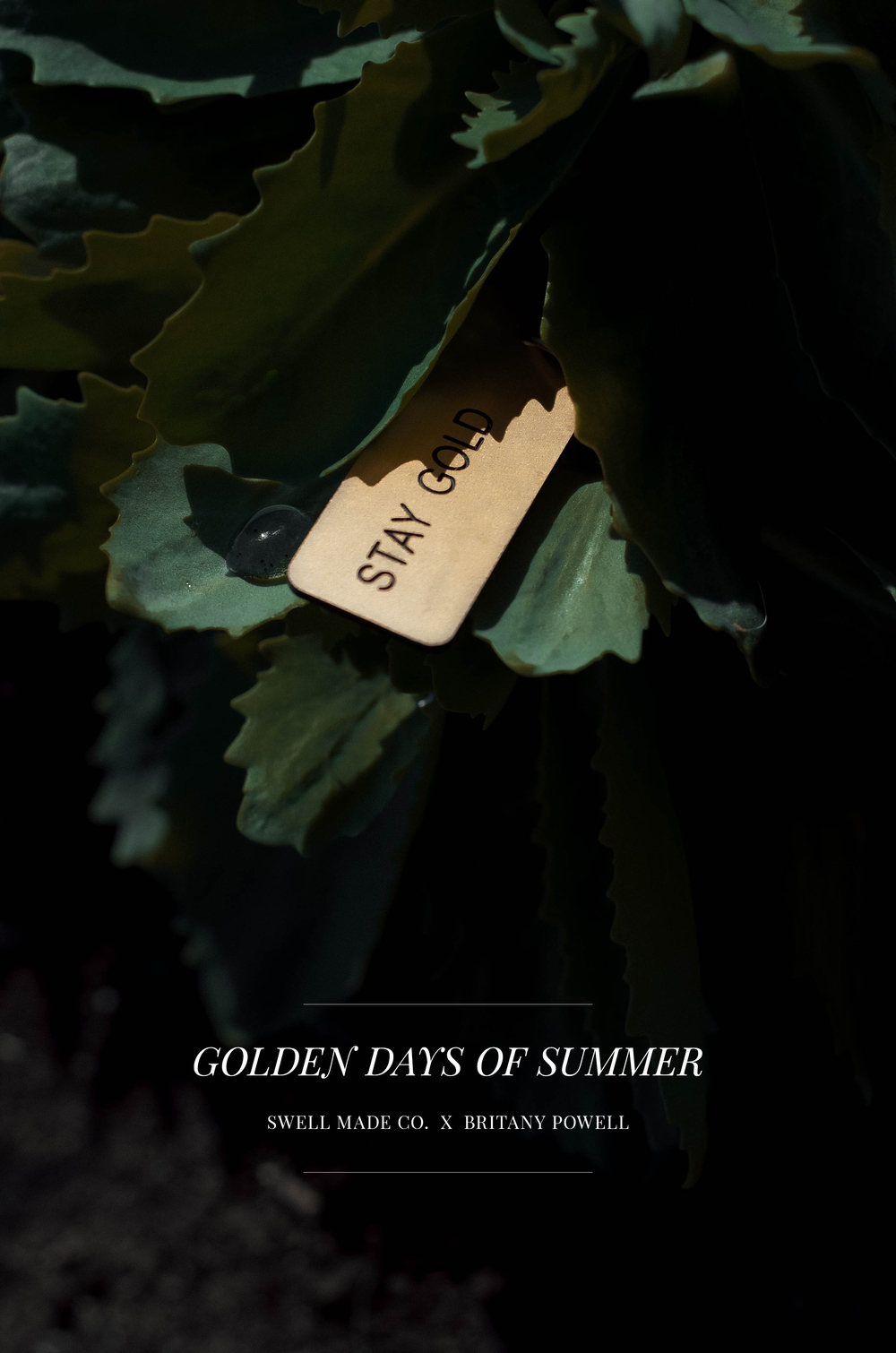 swellmadeco-britpowell-summer.jpg