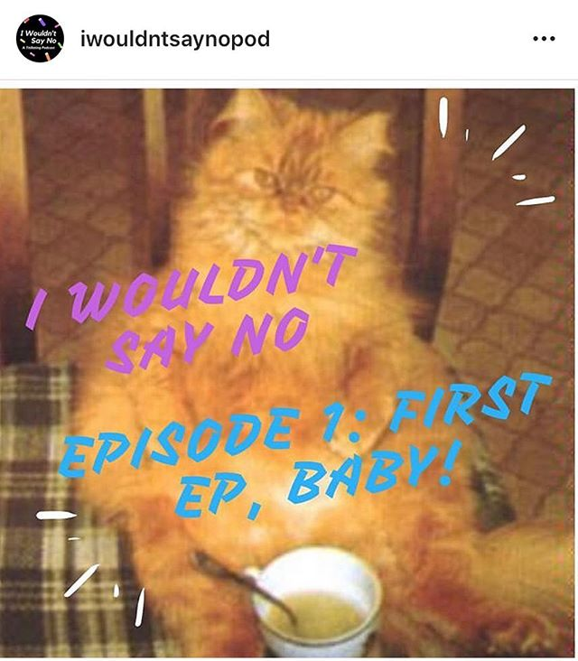 @kolovvva and I had a baby and it is a cat eating soup but more importantly it is also an audio file for your ears!! our lil boo of an intro ep is available on Spotify, iTunes, and Stitcher and we hope you'll give it a listen! follow @iwouldntsaynopod if u want more updates 🤠