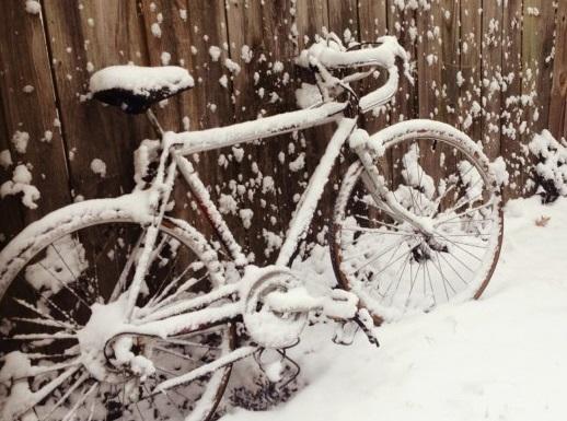 Winterausfahrt-PersonalTrainingOnline-1.jpg