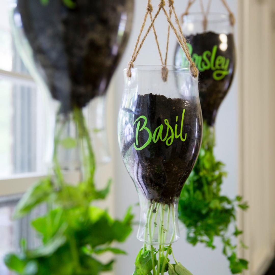 DIY Califia Hanging Planter