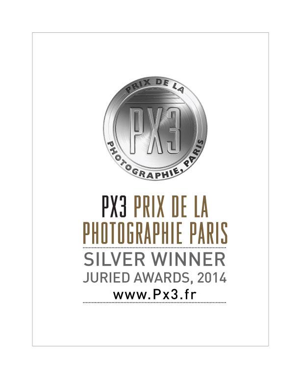 Px3-2014-Silver.jpg