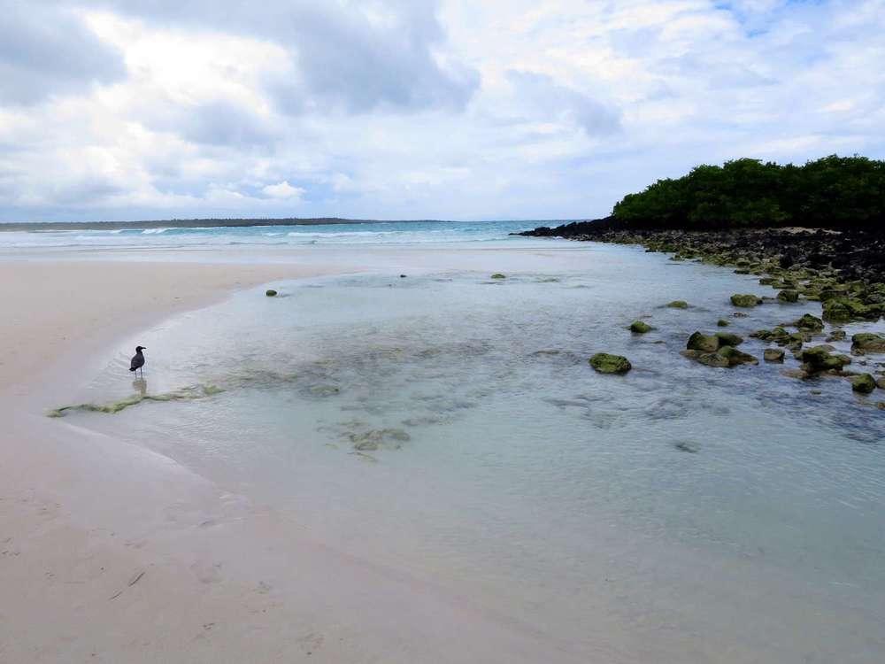01_Galapagos_IMG_2065.jpg