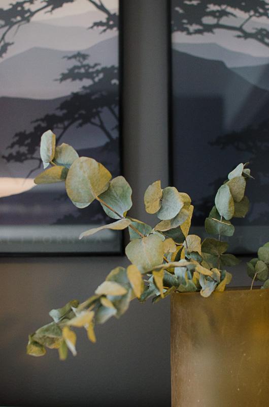Eukalyptus får en fantastisk vakker patina i tørket form. La de stå så lenge du kan, men ta bort vannet før de begynner å bli brune, så har du både friske og tørkede grener i lange tider!