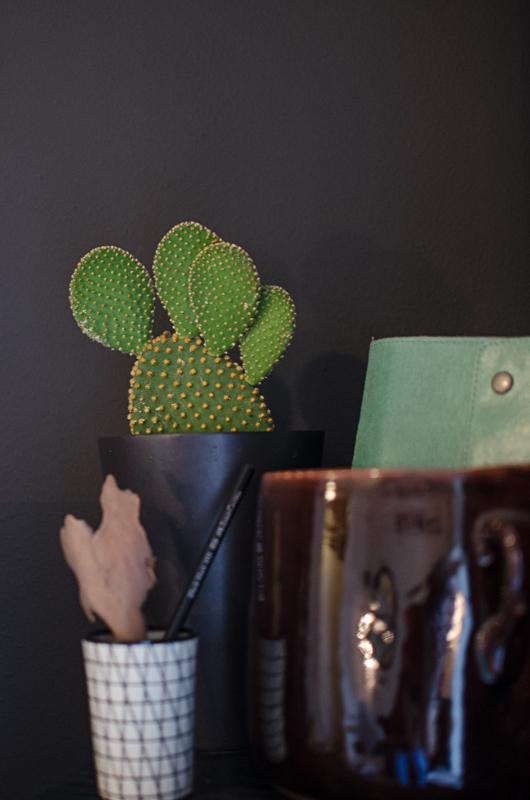 Cactus love! Disse små er både morsomme og skulpturelle. Bare husk på å sett de på lyse steder. De stikker nok litt, men det gjør roser også!