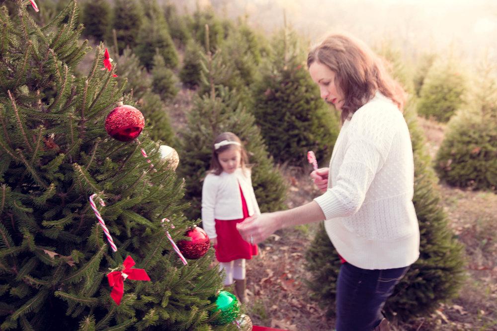 ChristmasTreeFarm-Post-0013.jpg