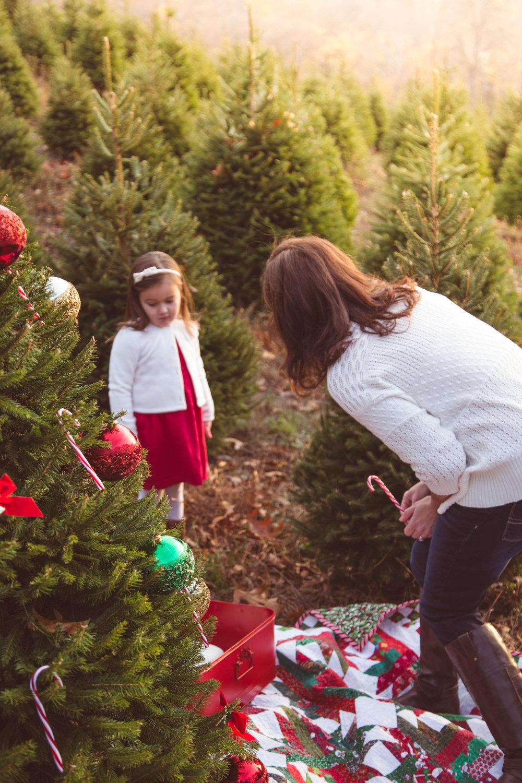 ChristmasTreeFarm-Post-0018.jpg