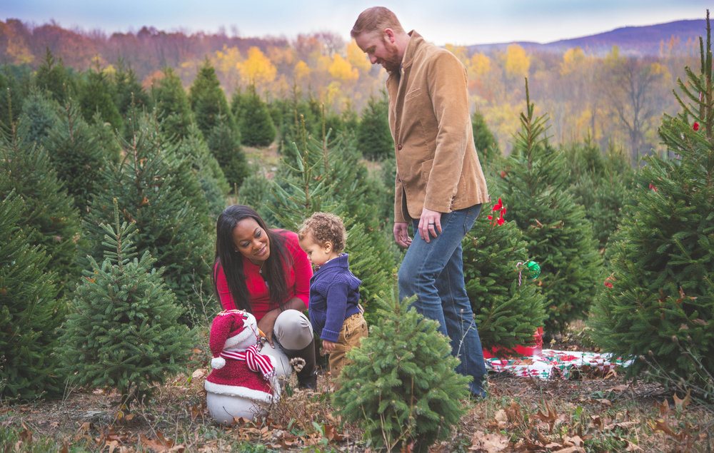 Holiday Mini Session-Gallery-0018.jpg