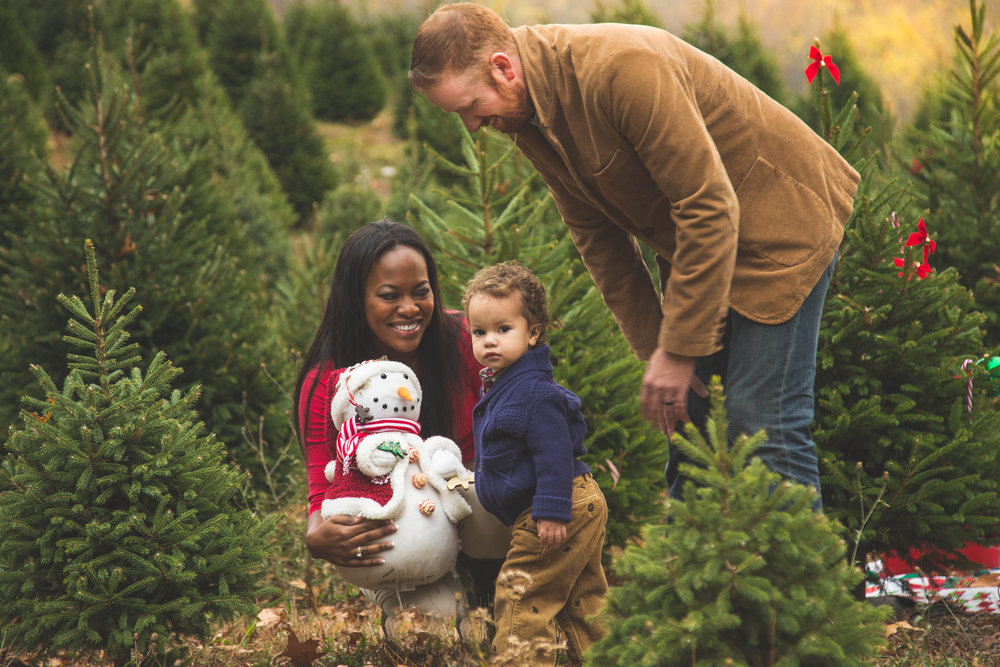 Holiday Mini Session-Gallery-0031.jpg
