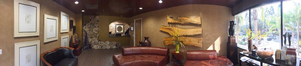 Dr. Mona Mofid's Stunning Office Waitroom