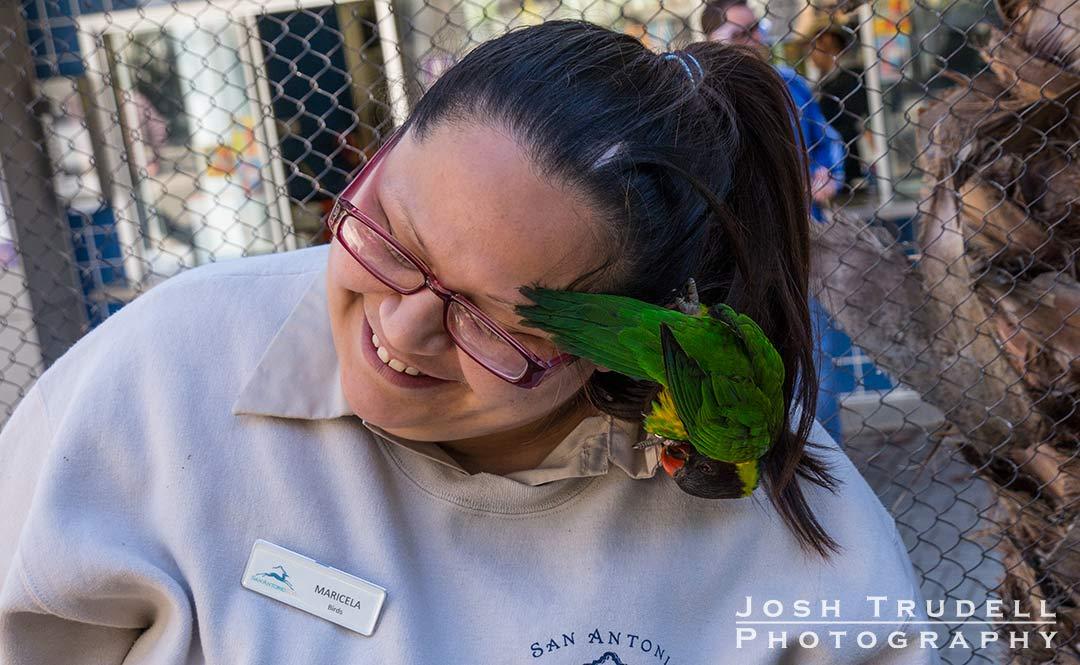 joshtrudell.com, parrot, photography