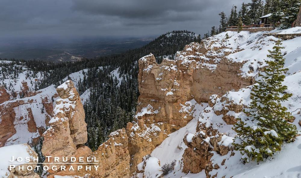 Bryce Canyon, near Rainbow Point.