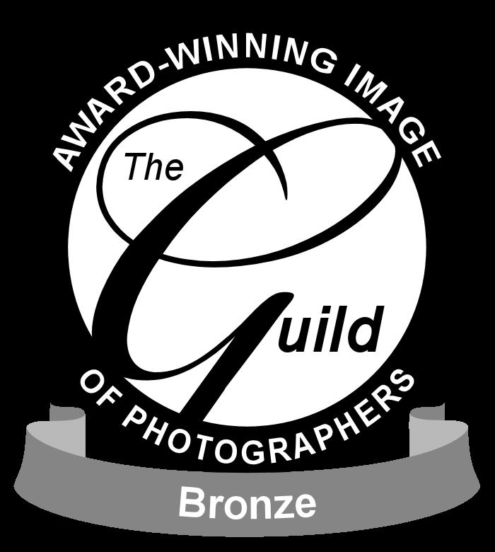Fiona Norman award winning photographer