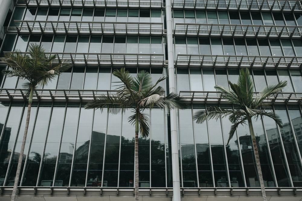Hong Kong - 201.jpg