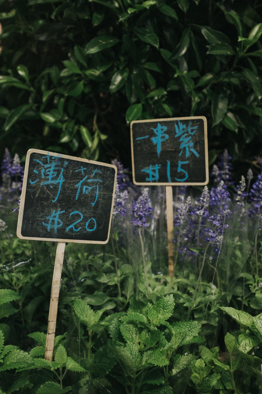Hong Kong - 387.jpg