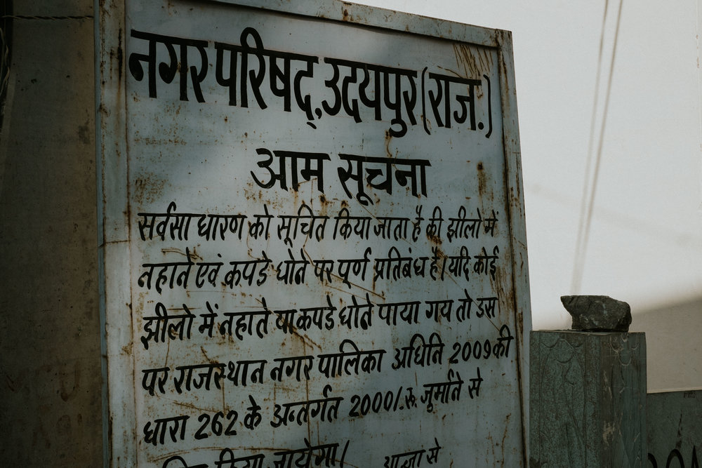 INDI3155.jpg