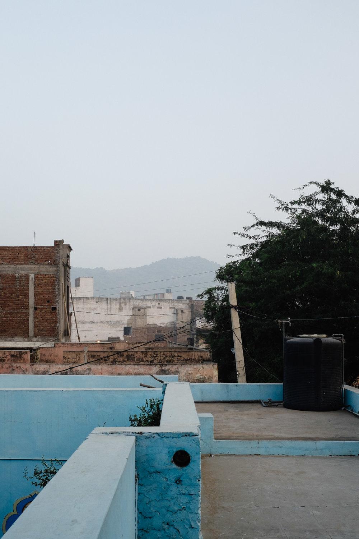 INDI2944.jpg