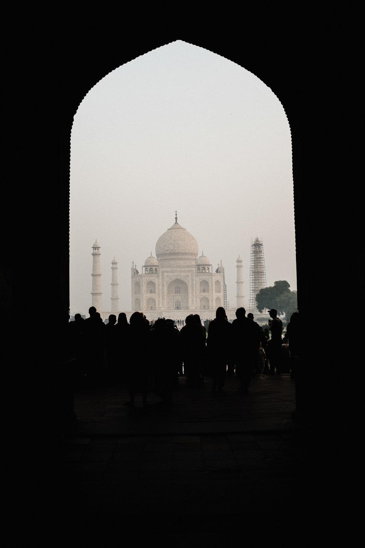 INDI3486.jpg